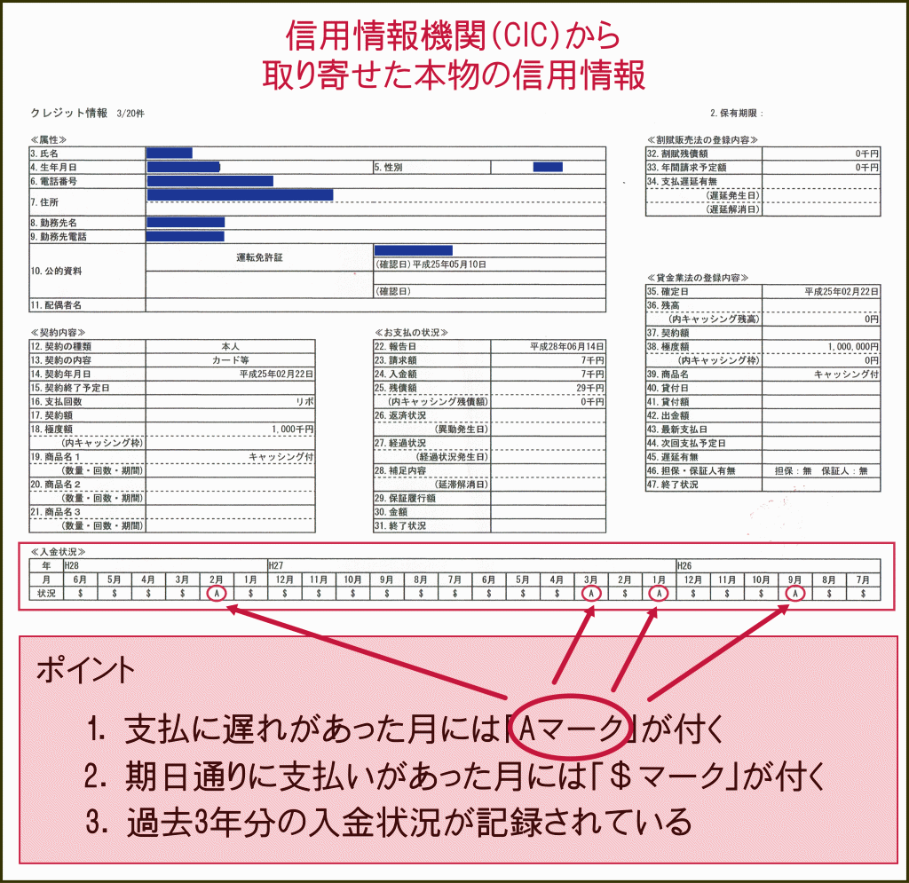 CICから取り寄せた本物の信用情報の書類